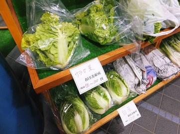 140102かすがモリモリ村③、お土産コーナー(美束のサラダ菜と白菜) (コピー).JPG
