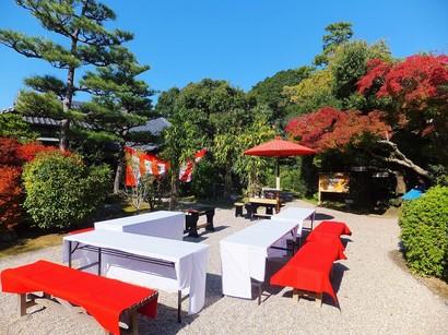 141106東山荘⑤、野点 (コピー).JPG