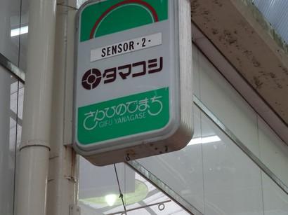 160905柳ヶ瀬⑪、センサー(タマコシ) (コピー).JPG