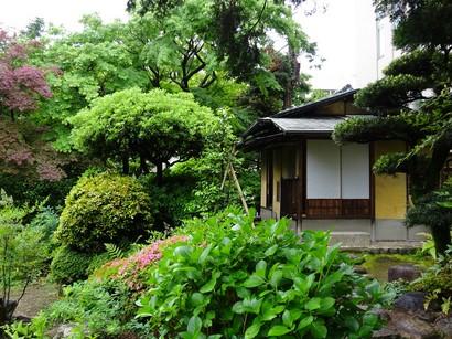 150516文化のみち橦木館④、茶室「撫松庵」 (コピー).JPG